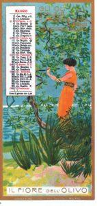 1903_maggio - calendario Olio Sasso